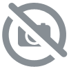 Coque Iphone canard hipster
